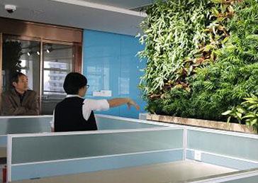 农商银行负责人对竣工的绿墙项目进行现场验收